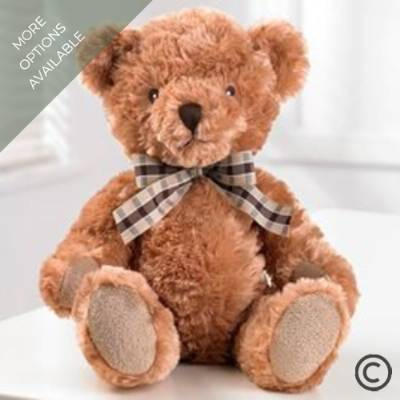 Bertie Bear makes a fantastic addition to your gift from Sandra's Florist. He's sure to be loved by young and old. Bertie is a plush baby safe bear.