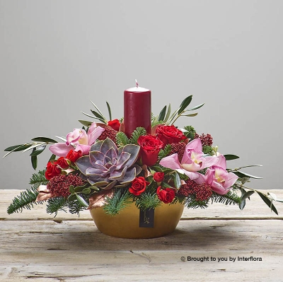 This arrangement will be a beautiful addition for a table centre or side. Featuring red large headed roses, pink cymbidium orchids, a red spray rose, an Echeveria, olea europaea, copper salal, spruce and burgundy skimmia skilfully created by a professional florist at Sandra's with a red candle displayed in a gold ceramic pot.