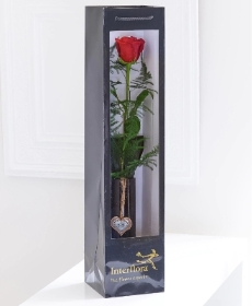 Sometime a single red roses says it all. This quality single long-stemmed red rose is simply complimented with foliage and perfectly presented in a stylish vase. Carefully hand delivered in a gift bag, this is a beautiful gift where less is more.