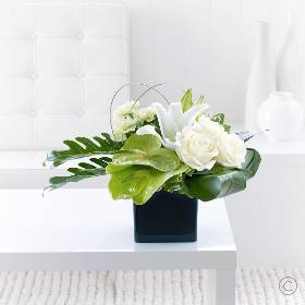 The perfect gift for those who appreciate elegance, simplicity and fine contemporary design.  Lush, glossy green leaves are expertly arranged by Sandra's Florist to form a natural decorative bed, which gives a spectacular contrast to these exquisite roses and lilies in purest white.