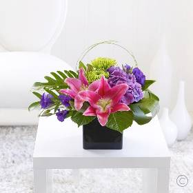 Here is a beautiful gift of flowers that encapsulates elegance and creativity at its very best. Sandra's Florist will select the rich velvety pink Oriental lilies and pair them with lavish purple and lime green shades to create a vibrant yet ultimately sophisticated look.
