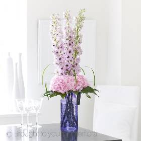 Stylish, elegant and wonderfully feminine, these magnificent delphiniums and delicate hydrangea are a true celebration of natural beauty. Notice how these soft shades of palest lilac and pink seem to shimmer in the light? Sandra's Florist will carefully create and hand deliver this exquisite gift, perfect for someone very special.