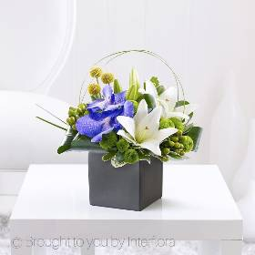 This is a very special arrangement that displays these exquisite blue Vanda orchids and pristine white LA lilies beautifully. Sandra's Florist will create this wonderfully sculpted display that simply exudes contemporary chic.