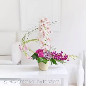 This stunning design features beautiful fresh flowers and cutting-edge floral techniques to create this exotic arrangement. Its free-flowing form uses a harmonious blend of soft shapes, a multitude of textures and vibrant pink tones. It features elegant calla lilies and the beautiful long lasting cymbidium orchid, glossy green foliage are a true contrast against the mass of deep pink carnations. The individual succulent and sweeping orchids complete the designs skilfully created by Sandra's Florist.This stunning design features beautiful fresh flowers and cutting-edge floral techniques to create this exotic arrangement. Its free-flowing form uses a harmonious blend of soft shapes, a multitude of textures and vibrant pink tones. It features elegant calla lilies and the beautiful long lasting cymbidium orchid, glossy green foliage are a true contrast against the mass of deep pink carnations. The individual succulent and sweeping orchids complete the designs skilfully created by Sandra's Florist.