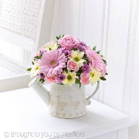 Pretty as a picture, our decorative watering can display is brimming with fresh flowers and has a cute baby duckling motif. Sandra's Florist will select flowers in soft shades of pink accented with cream to celebrate the arrival of a beautiful new baby girl.  Featuring 3 pink germini, a pink spray chrysanthemum, a pink large headed rose, a pink spray carnation and a cream spray chrysanthemum with foliage including eucalyptus arranged in a duckling design watering can.
