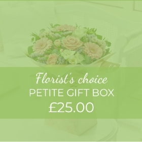 This Petite gift box of fresh flowers will be a delight to anyone who receives it. Our skilled florists will hand select beautiful blooms to create a small but perfectly formed bouquet. Enhanced with gift wrapping and presented in a gift box this design is ideal where space is limited unlike the wishes you want to convey.