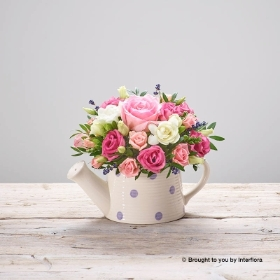This sweet Baby Girl Ceramic Arrangement, pink rain is the perfect gift to celebrate the arrival of a precious new born baby. This design features the finest Pink roses, pink lisianthus, scented freesia and scented dried lavender. Expertly arranged into a cute ceramic watering can, makes this very easy to care for. A wonderful gift on its own, but here you have the option of adding Gigi Giraffe a beautiful plush soft toy for that special little baby. Just add your own personal message and your gift will be hand delivered by sandra's.